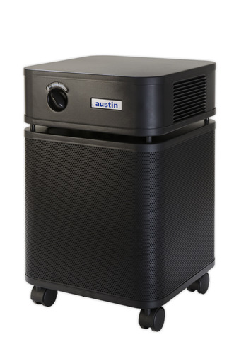 air purifier for mold air purifiers 10994